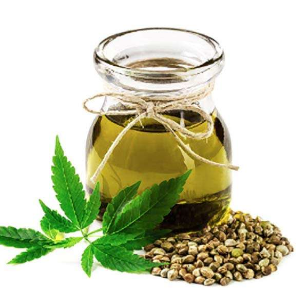 Groovy Hemp Company in-depth articles provide information on Organic, CBD Oil products along with other interesting subjects including hemp oil extract and hemp seed oil.